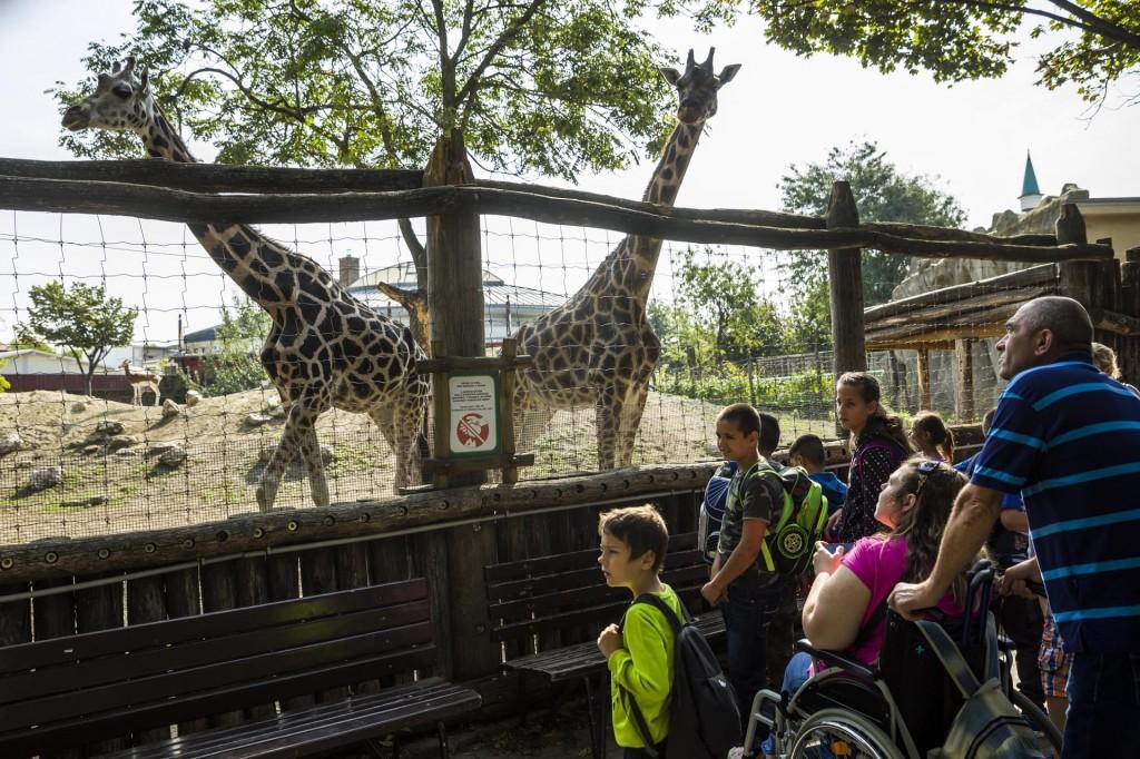 A 27. Sérült Gyermekek Napja a budapesti állatkertben